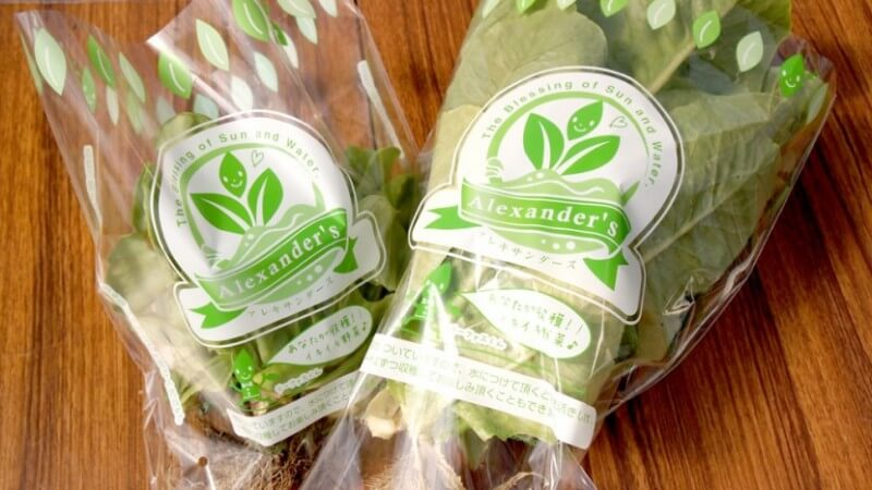 野菜ブランドのパッケージ